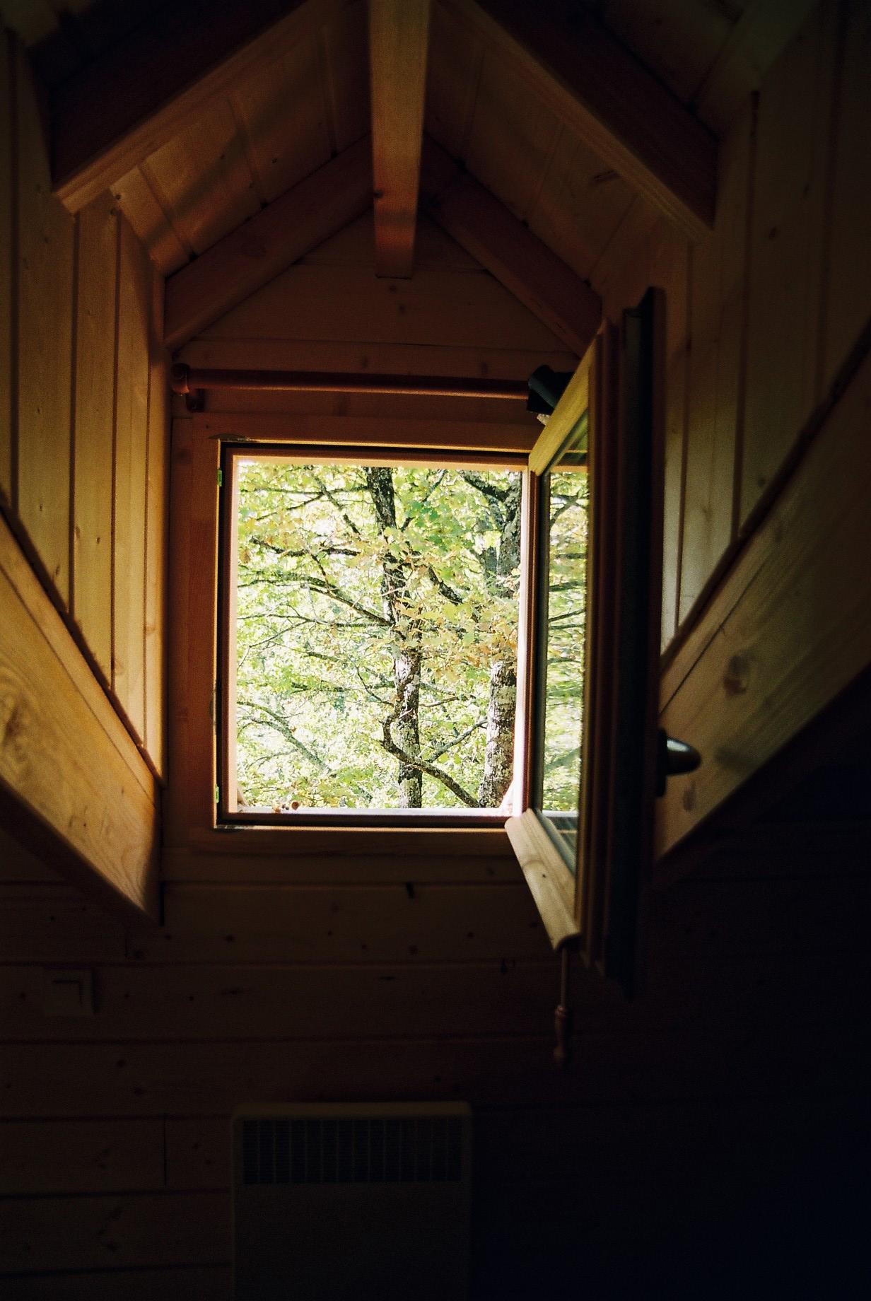 La cabane dans les arbres cabane perch e des ch nes du m doc for Buer dans les fenetre